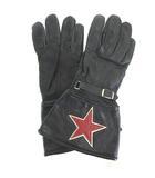 バンソン VANSON BACKDROP バックドロップ スター グローブ 手袋 レザー 黒 ブラック IBS88