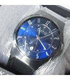 スカーゲン SKAGEN 腕時計 basic titanium mens チタン T233XLTMN チタニウム デイト付き 箱付 稼働品 QZ 1014