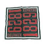デルボー DELVAUX スカーフ シルク 総柄 1829 緑 /YI27 ■SH